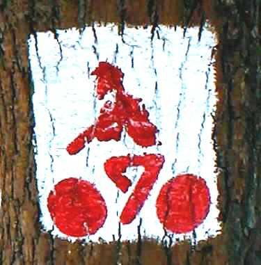 kv1999-3_bicutpecs